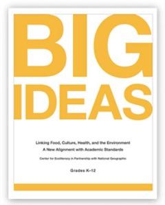 big_ideas_align_cover